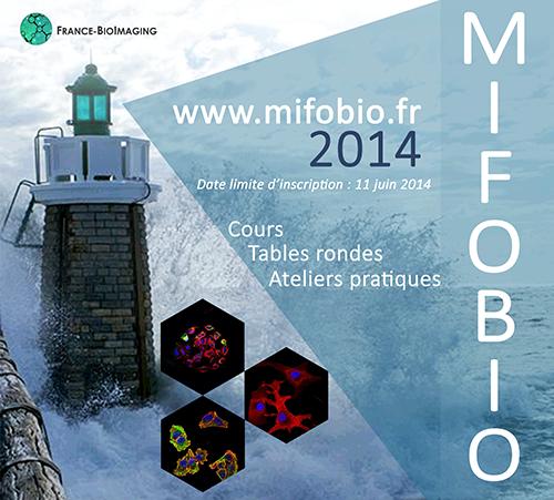 Affiche Post MiFoBio