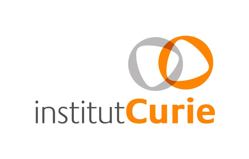 Image result for institut curie logo