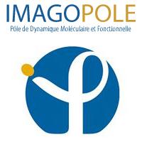 pseudo logo Imagopole