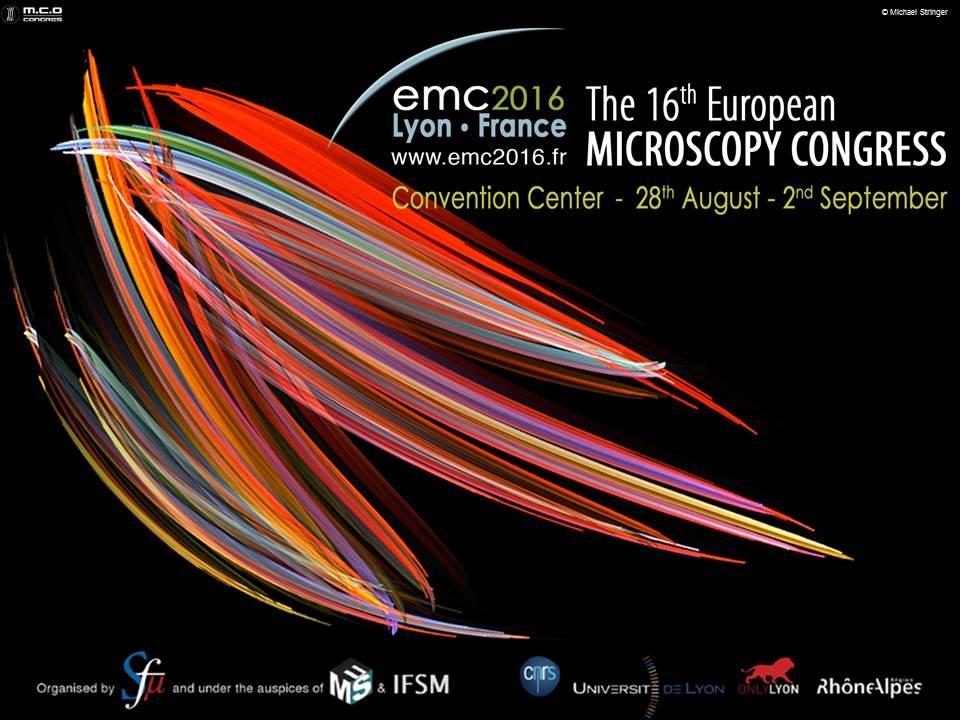 Lyon EMC2016_diapo-pour-oral